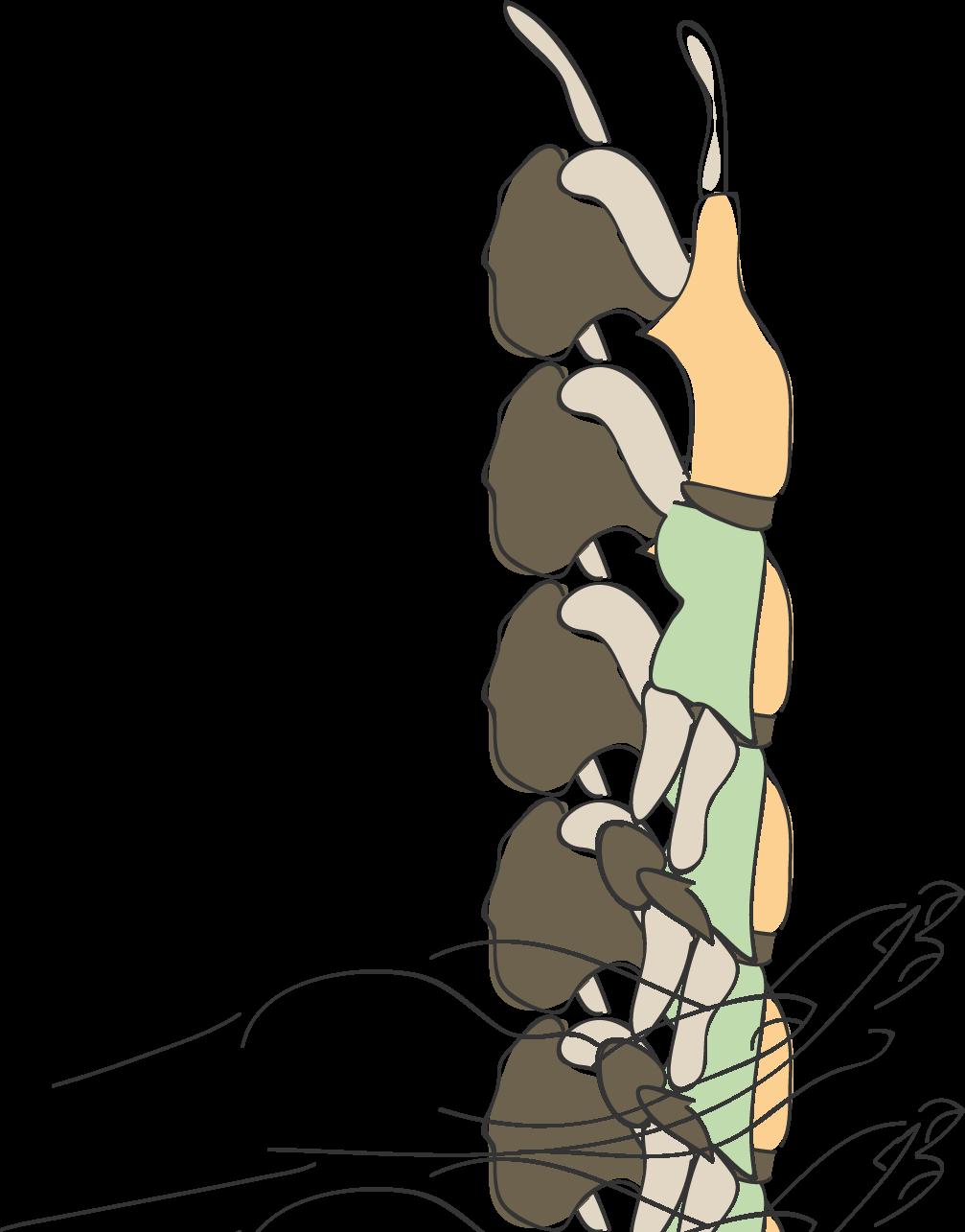 Zentrum für psychisch belastete Kinder und Familien
